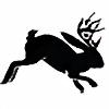 Jazzmincat's avatar