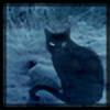 Jenealia's avatar