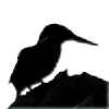 Jer-Trow's avatar