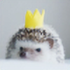 jhernando's avatar