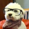 jigsa's avatar