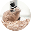 JiiBee's avatar