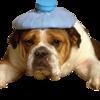 jjb2's avatar