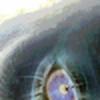 jjhhon's avatar