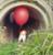 jmikau's avatar