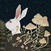 joannaillustrations's avatar