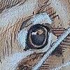 Jobertano's avatar
