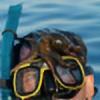 JOCAPS's avatar