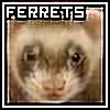 JoeFerretman's avatar