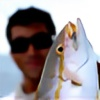 Joeu3's avatar