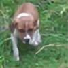 jofarrell4's avatar