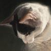 JolieOneiron's avatar