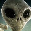 Jonson559's avatar
