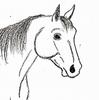 jonstallion's avatar