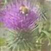 Joycey123's avatar