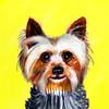 JoyFinderCards's avatar