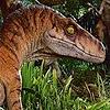 JPLover764's avatar