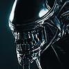 jQueary1991's avatar