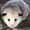 jskers's avatar