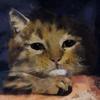 jstq's avatar
