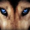 juanqui3000222's avatar