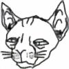 junkyard-cat's avatar