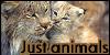 justAnimals's avatar