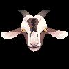 justgoats's avatar