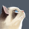 jzenery's avatar