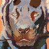 K0NIGWULF's avatar