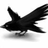 K0rvinus's avatar