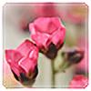 K-Photos's avatar