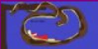 Kaa-fans's avatar