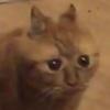 Kadaashi's avatar