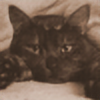 kagari9's avatar