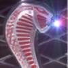 KakashisDolphin's avatar