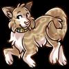 Kaleidopup's avatar