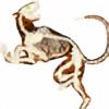 Kalfiez's avatar