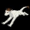 KaliyaKarnage's avatar