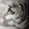 Kamynia's avatar