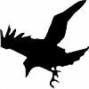 karasuba's avatar