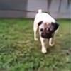 karu1213's avatar