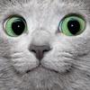 Karunin's avatar