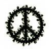 katarzynaphoto's avatar