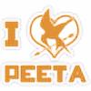 Katnissforeverdeen's avatar