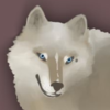 katstica's avatar