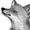 Katterson's avatar
