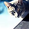 kattwo's avatar