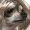 KauzzResources's avatar