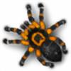 Kavel-WB's avatar